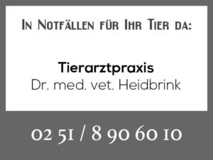 Tierarztpraxis Heidbrink @ Tierarztpraxis Dr. Wigger