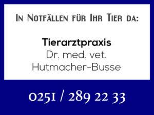 Tierarztpraxis Hutmacher-Busse - Rufbereitschaft @ Tierarztpraxis Hutmacher-Busse