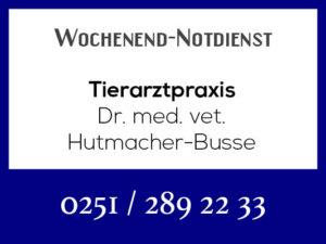 Tierarztpraxis Hutmacher-Busse - Wochenend-Notdienst @ Tierarztpraxis Hutmacher-Busse