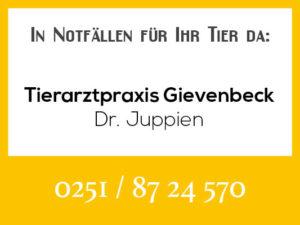 Tierarztpraxis Gievenbeck Juppien - Rufbereitschaft @ Tierarztpraxis Juppien
