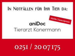 aniDOC Tierarzt Konermann - Rufbereitschaft @ Tierarztpraxis aniDOC Konermann