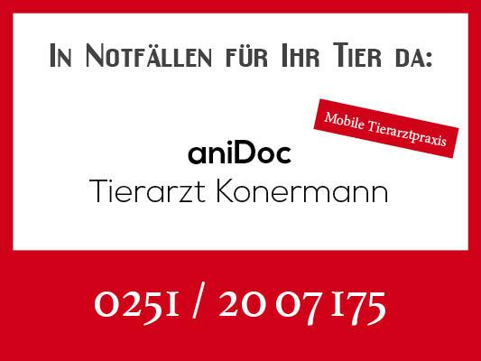 Notdienstkalender_Profilbild-konermann