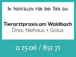 Tierarztpraxis am Waldbach - Rufbereitschaft @ Tierarztpraxis am Waldbach