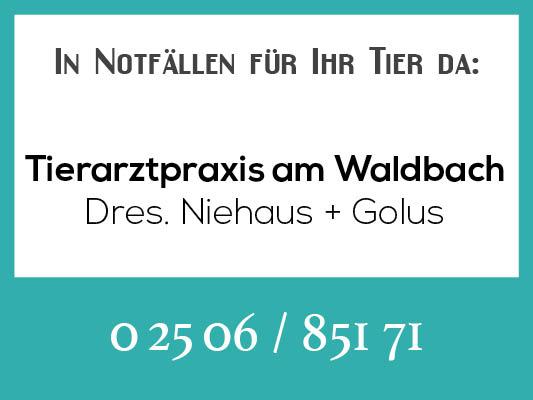 Notdienstkalender_Profilbild-niehaus-golus