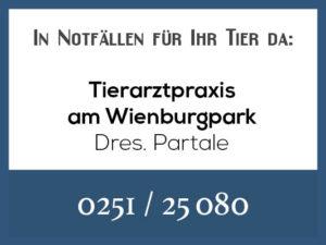 Tierarztpraxis Partale - Rufbereitschaft @ Tierärztliche Praxis am Wienburgpark