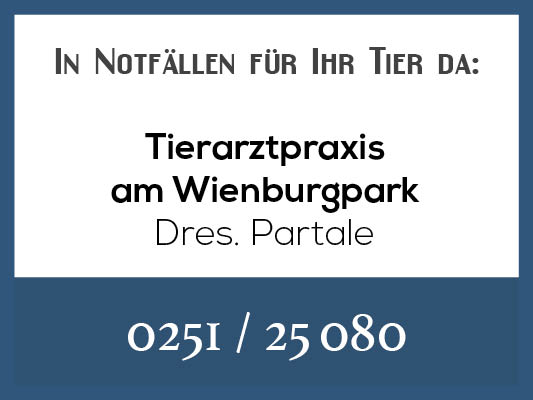 Notdienstkalender_Profilbild-partale