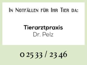 Tierarztpraxis Pelz - Wochenend-Notdienst @ Tierärztliche Praxis am Wienburgpark