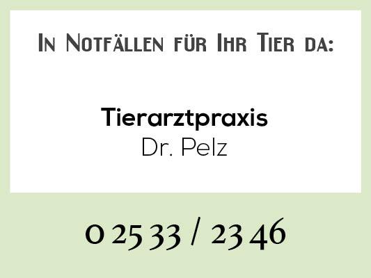 Notdienstkalender_Profilbild-pelz