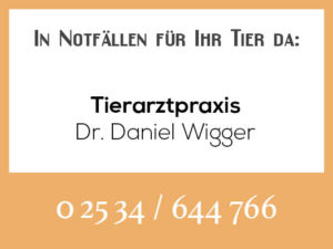 Tierarztpraxis Wigger Roxel - Rufbereitschaft @ Tierarztpraxis Dr. Wigger