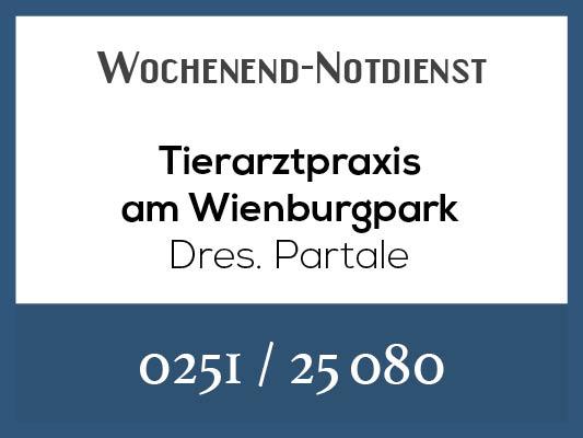 Notdienstkalender_Profilbild_Partale