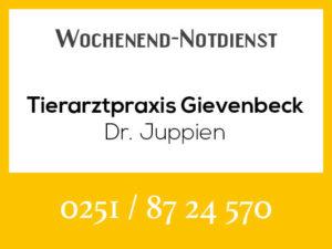 Tierarztpraxis Gievenbeck Juppien - Wochenend-Notdienst @ Tierarztpraxis Juppien