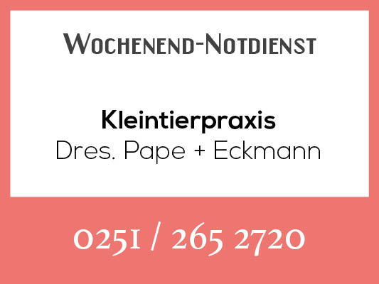 Notdienstkalender_Profilbild_pape-eckmann