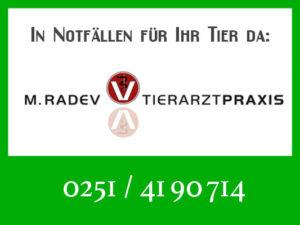 Tierarztpraxis Radev - Rufbereitschaft @ Tierarztpraxis M. Radev