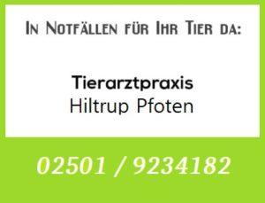 Tierarztpraxis Hiltrup Pfoten - Rufbereitschaft @ Tierarztpraxis Hiltrup Pfoten